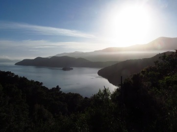 Queen Charlotte Drive, Neuseeland Südinsel